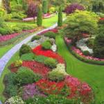 fiori e viali in giardino