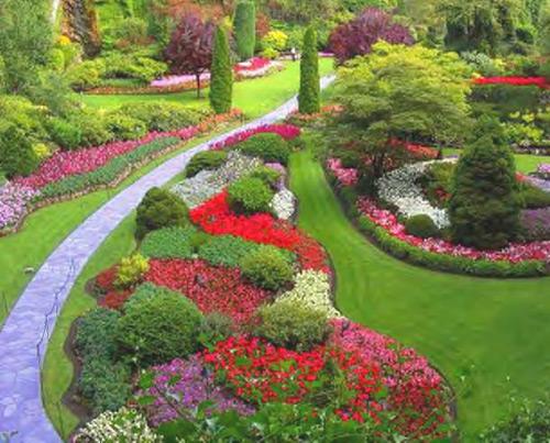 Fiori e piante da giardino consigli paratici arredareilgiardino.it