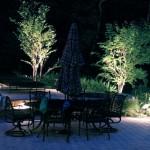 luci da giardino su alberi
