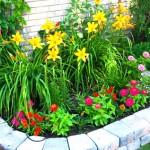 muretto e fiori in giardino