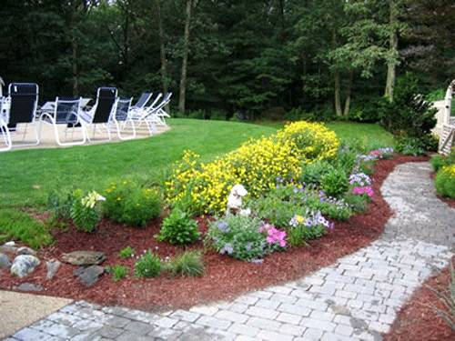 fiori e piante da giardino, consigli paratici - arredareilgiardino.it - Arredare Il Giardino Con Le Pietre