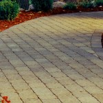 viale epr il giardino costruito con mattoni