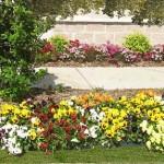 Viale giardino costruito con lastre di pietra