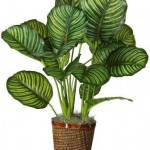 pianta finta in vaso