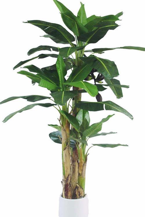 piante finte da esterno prezzi