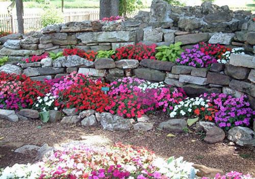 giardino roccioso fai da te: foto idee e consigli - Giardino Piccolo Fai Da Te