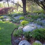 Grande giardino roccioso con alberi