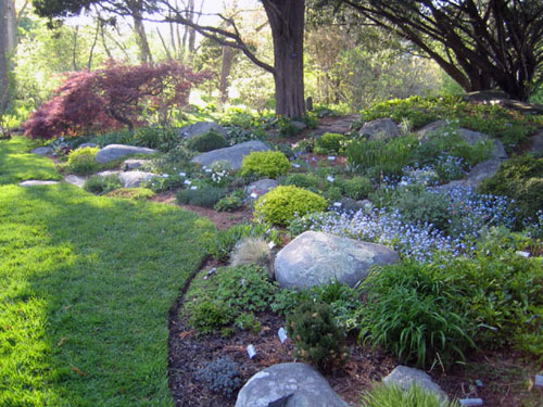 giardino roccioso fai da te: foto idee e consigli - Piccolo Giardino Consigli