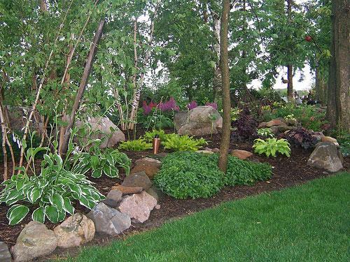 Alberi e piante giardino roccioso